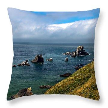 Coastal Look Throw Pillow by Robert Bales