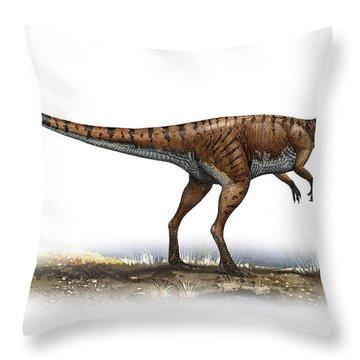 Coelophysis Bauri, A Prehistoric Era Throw Pillow by Sergey Krasovskiy