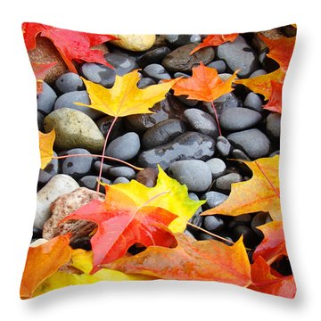 Colorful Autumn Leaves Prints Rocks Throw Pillow by Baslee Troutman