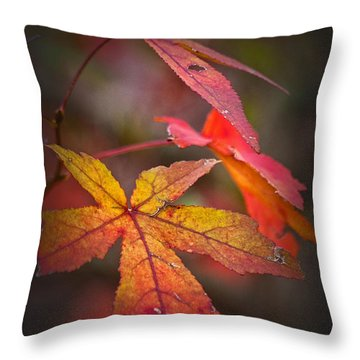 Colors Throw Pillow by Karol Livote