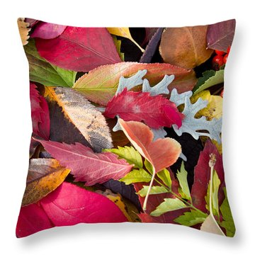 Colors Of Autumn Throw Pillow by Shane Bechler