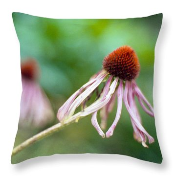Cone Flower Throw Pillow by Marcio Faustino