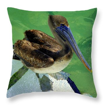 Cool Footed Pelican Throw Pillow by Karen Wiles