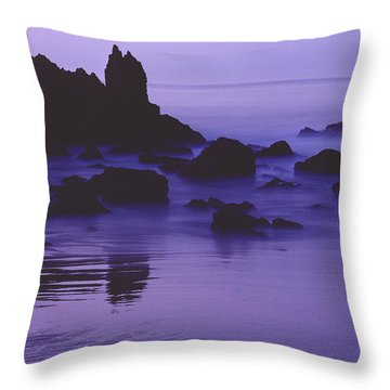 Corona Del Mar 5 Throw Pillow by Mark Greenberg