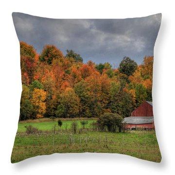 Country Time Throw Pillow by Lori Deiter