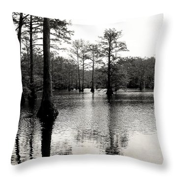 Cypress Trees In Louisiana Throw Pillow by Ester  Rogers