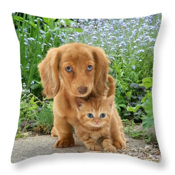 Dachshund And Tabby Throw Pillow by Jane Burton