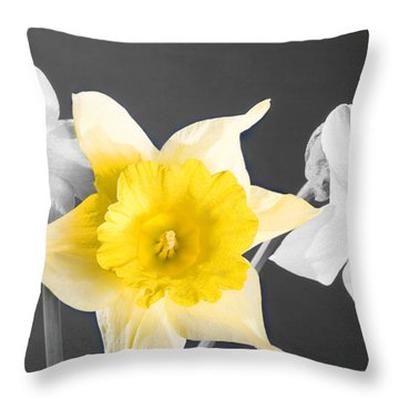 Daffodil Trio  Throw Pillow by Cheryl Young