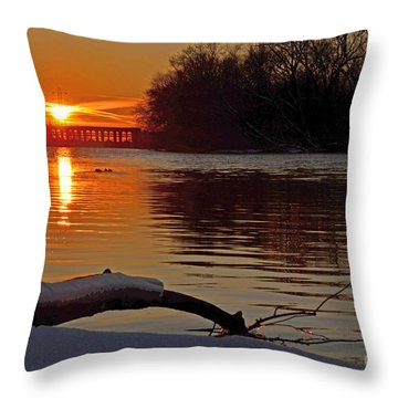 Daily Escape Throw Pillow by Sue Stefanowicz