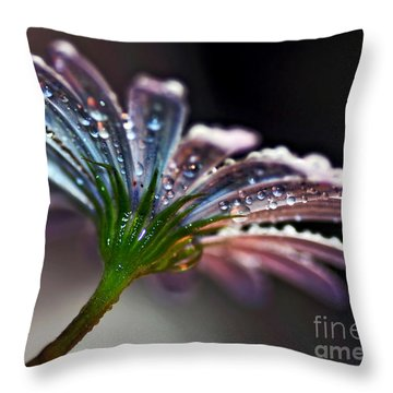 Daisy Abstract With Droplets Throw Pillow by Kaye Menner