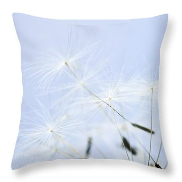 Dandelion Throw Pillow by Elena Elisseeva