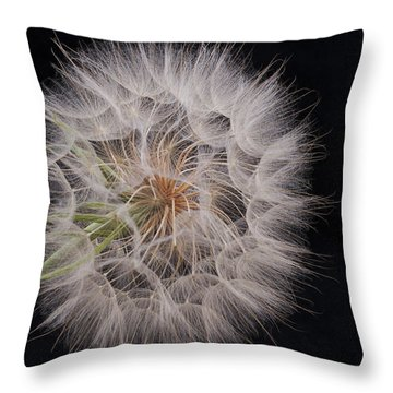 Dandelion Silhouette Throw Pillow by Ivelina G
