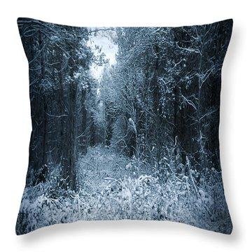 Dark Place Throw Pillow by Svetlana Sewell