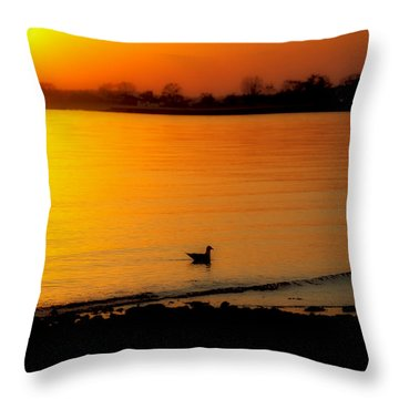 Day Settling Throw Pillow by Karol Livote