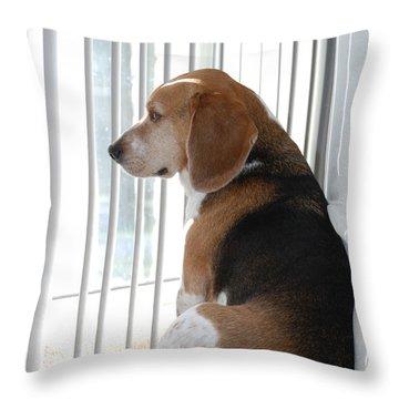 Daydreaming Throw Pillow by Jennifer Ancker