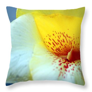 Delicate Throw Pillow by Leigh Meredith