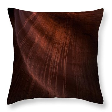 Desert Rain Throw Pillow by Mike  Dawson