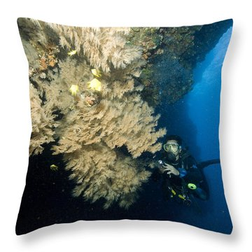 Diver Next To A Coral Fan Sheltering Throw Pillow by Tim Laman