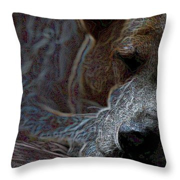 Do Not Disturb Throw Pillow by One Rude Dawg Orcutt