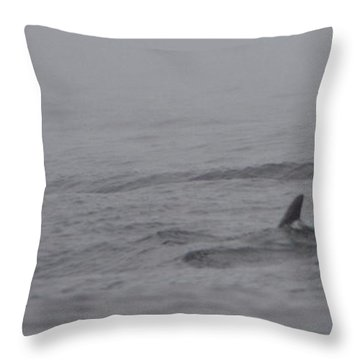 Dolphins In The Mist  Throw Pillow by Bruce J Robinson