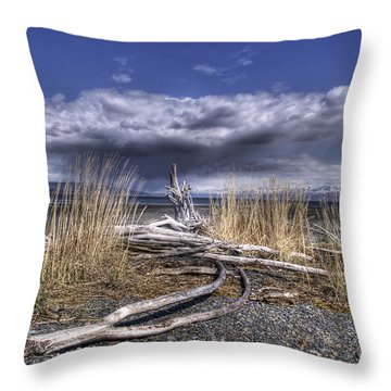 Driftwood By The Sea Throw Pillow by Michele Cornelius