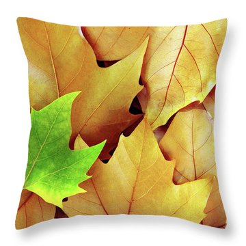 Dry Fall Leaves Throw Pillow by Carlos Caetano