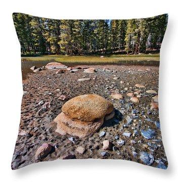 Dry Lake Throw Pillow by Bonnie Bruno