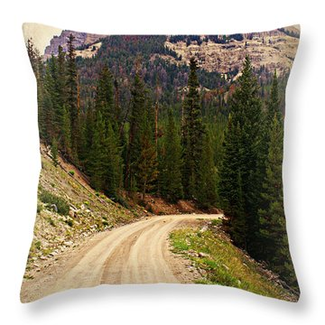 Dubois Mountain Road Throw Pillow by Marty Koch