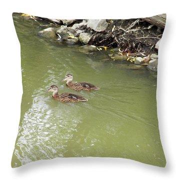 Duckling Pair Throw Pillow by Corinne Elizabeth Cowherd