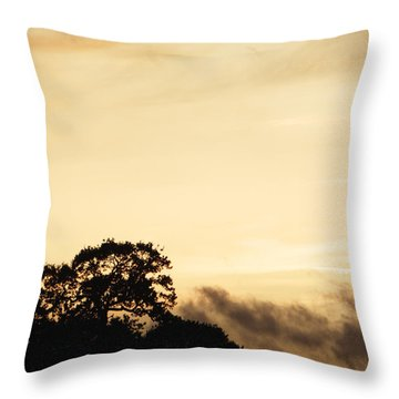 Dusk Forest  Throw Pillow by Pixel Chimp