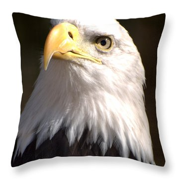 Eagle Eye Throw Pillow by Marty Koch