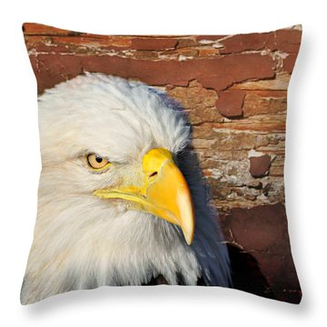 Eagle On Brick Throw Pillow by Marty Koch