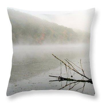 Early Autumn Morn Throw Pillow by Karol Livote