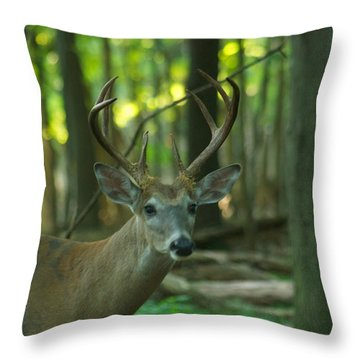 Eight Point_9531_4366 Throw Pillow by Michael Peychich