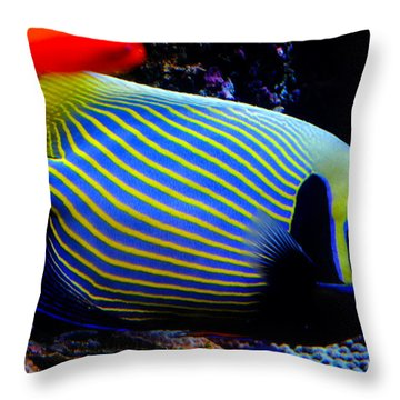 Emperor Angelfish Throw Pillow by Pravine Chester