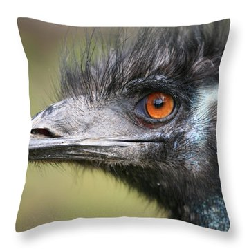 Emu Throw Pillow by Karol Livote
