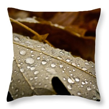 End Of Season Throw Pillow by Susan Herber