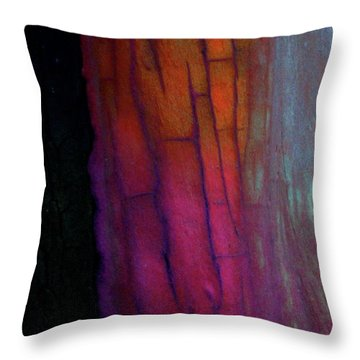 Throw Pillow featuring the digital art Enter by Richard Laeton