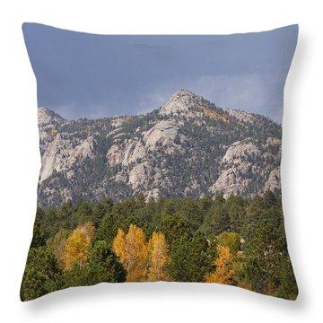 Estes Park Autumn Lake View Vertical Throw Pillow by James BO  Insogna