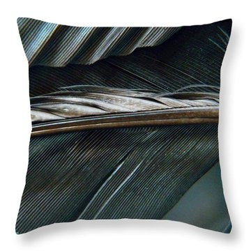 Every Shade Throw Pillow by Chris Berry