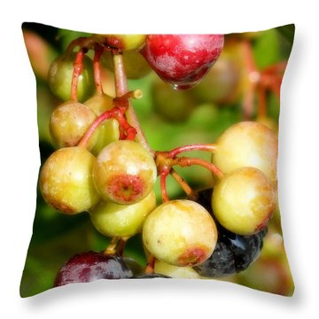 Expectation Throw Pillow by Karen Wiles