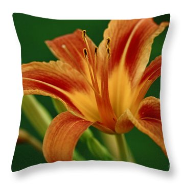 Expression Of Joy Throw Pillow by Inspired Nature Photography Fine Art Photography