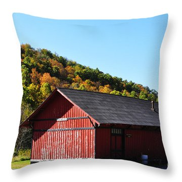 Fall Color Pickens West Virginia Throw Pillow by Thomas R Fletcher
