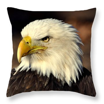 Fall Eagle 4 Throw Pillow by Marty Koch