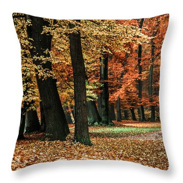 Fall Scenery Throw Pillow by Hannes Cmarits