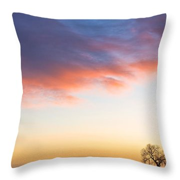 Feeling Small Throw Pillow by James BO  Insogna