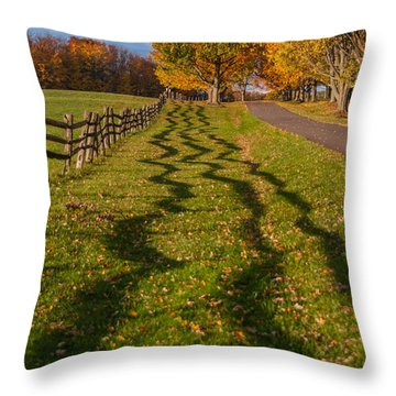Fence Throw Pillow by Guy Whiteley