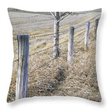 Fenceline And Cropland In Late Fall Throw Pillow by Darwin Wiggett