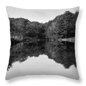 Fenns Pond Throw Pillow by Karol Livote
