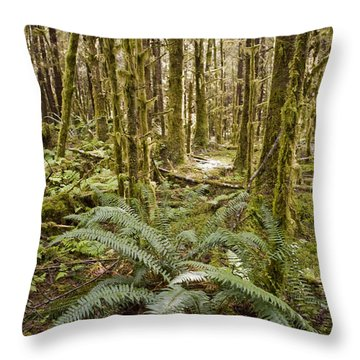 Ferns Sit On The Forest Floor Throw Pillow by Taylor S. Kennedy